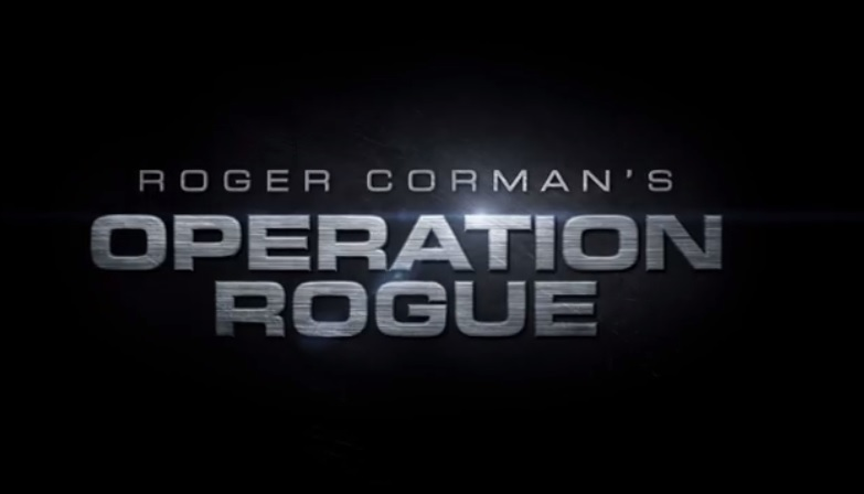 Operation Rogue 1