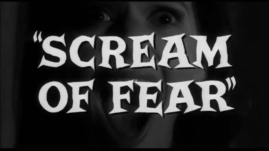 Scream of Fear8