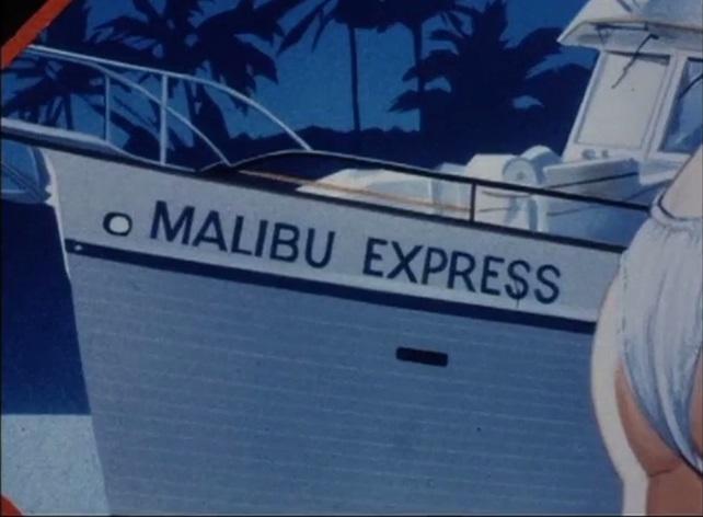 Malibu Express 22